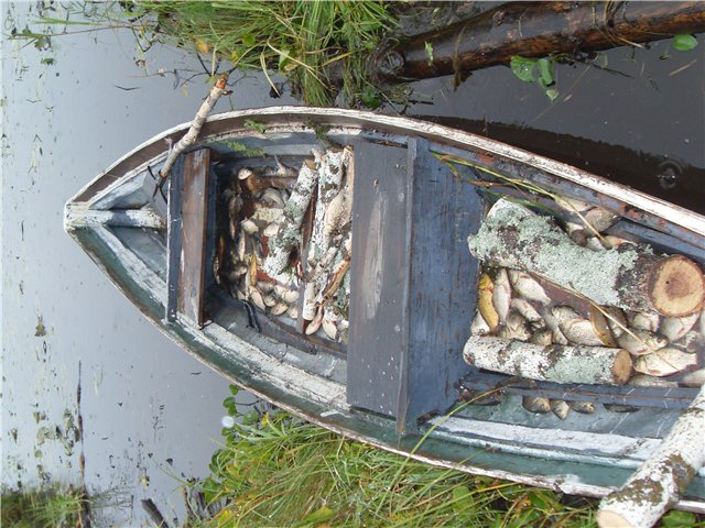 караси в лодке