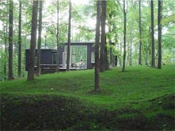 Домики в лесу, или на берегу реки