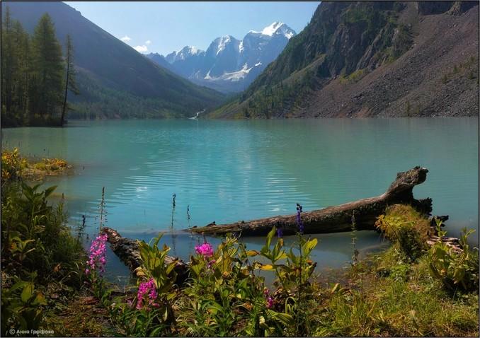 Природа и климат Алтая