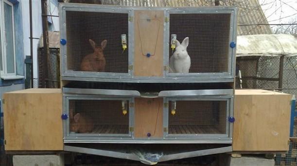 Разведение кроликов Часть 1