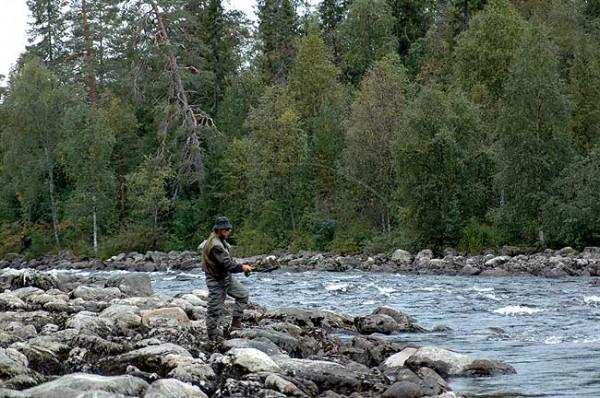 Рыбные ресурсы Карелии, озёра, реки
