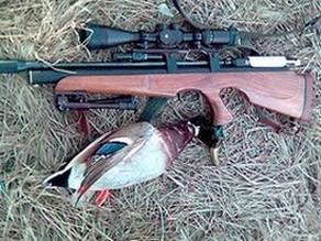 Сравнение пневматических винтовок, мелкашки 22LR, и гладкоствольного огнестрела