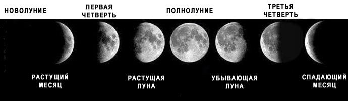 Как ориентироваться по солнцу, звездам и луне